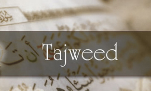 Tajweed Studies